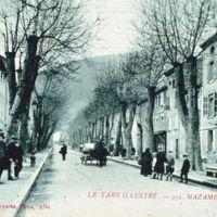 Carte postale de Mazamet : boulevard Soult (vert)