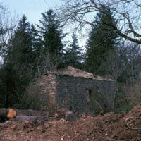 Ruines du Fustié : bâtiment
