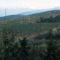 La montagne, aux environs du barrage des Montagnés