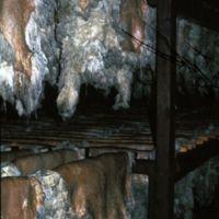 Peaux suspendues à l'étuve au Moulin de la Resse