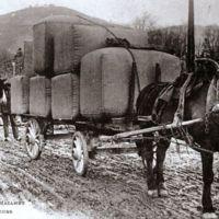 Carte postale: balles de laine sur camion hippomobile