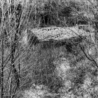 Bâtiment en ruines en amont du pont de Canjelieu