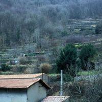 Jardins en terrasse dans la vallée de l'Arnette