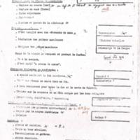 MER 11.pdf