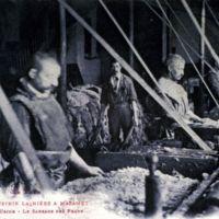 Carte postale: intérieur usine (le sabrage des peaux)
