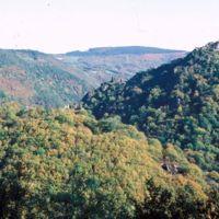 Village d'Hautpoul et Saint-Sauveur, vus depuis la route de Carcasonne