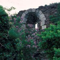 Dans les ruines de Saint-Sauveur