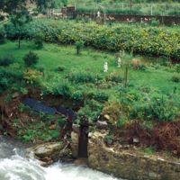 Emplacement de l'usine : nains de jardins