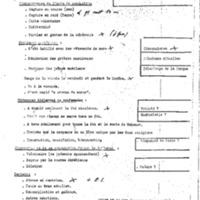 SIC Bin_0381.pdf