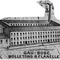 Carte 1896 : Gau-Bosc, molletons et flanelles